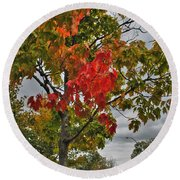 Round Beach Towel featuring the photograph Cold Autumn Breeze  by Michael Frank Jr