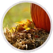 Round Beach Towel featuring the photograph Colorful Autumn by Nava Thompson