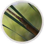 Common Cattail Round Beach Towel