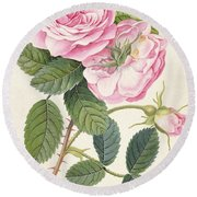 Common Provence Rose Round Beach Towel