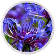 Cornflower Color Round Beach Towel