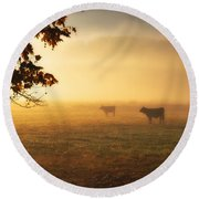 Cows In A Foggy Field Round Beach Towel