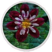 Crazy Flower Over Brick Round Beach Towel by Eric Liller