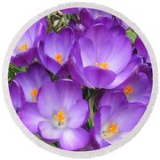 Crocus Round Beach Towel by Laurianna Taylor