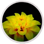 Round Beach Towel featuring the photograph Dahlia Delight by Jeanette C Landstrom