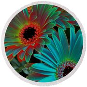 Round Beach Towel featuring the photograph Daisies From Another Dimension by Rory Sagner
