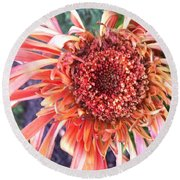 Daisy In The Wind Round Beach Towel