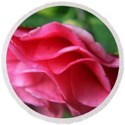 Dancing Petals Of The Camellia Round Beach Towel