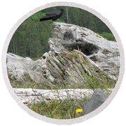 Dandelion Crow - On Oregon Coast Driftwood  Round Beach Towel