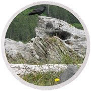 Dandelion Crow - On Oregon Coast Driftwood  Round Beach Towel