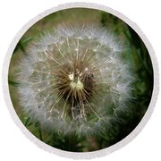 Round Beach Towel featuring the photograph Dandelion Going To Seed by Sherman Perry