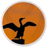 Dawn Of A Double-crested Cormorant  Round Beach Towel