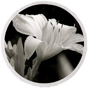 Daylily Study In Bw Iv Round Beach Towel by Sue Stefanowicz