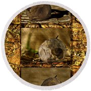 Round Beach Towel featuring the photograph Dead Rosebud Triptych by Steve Purnell