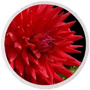 Decked Out Dahlia Round Beach Towel