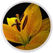 Round Beach Towel featuring the photograph Dew On The Daylily by Debbie Portwood