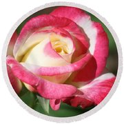 Double Delight Rose Round Beach Towel