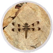 Round Beach Towel featuring the photograph Dragonfly At Rest by Deniece Platt