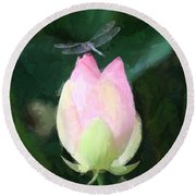 Dragonfly On Water Lily Round Beach Towel