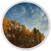 Dressed In Autumn Colors Round Beach Towel