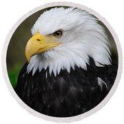 Eagle In Ketchikan Alaska 1371 Round Beach Towel