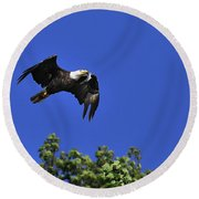 Round Beach Towel featuring the photograph Eagle Over The Tree Top by Randall Branham