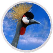East African Crowned Crane Round Beach Towel by Methune Hively