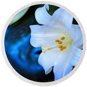 Round Beach Towel featuring the photograph Eclipse With A Lily by Steven Sparks