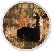 Round Beach Towel featuring the painting Eight Point Buck by Karen Harrison