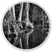 Round Beach Towel featuring the photograph Elephant Feet by Dan Wells