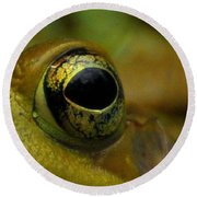 Eye Of Frog Round Beach Towel by Paul Ward