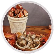 Round Beach Towel featuring the photograph Fall Bulbs 1 by Verena Matthew