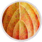 Fall Leaf Upclose Round Beach Towel