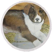 Round Beach Towel featuring the painting Fat Puppy by Norm Starks