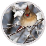 Female Northern Cardinal 4300 Round Beach Towel