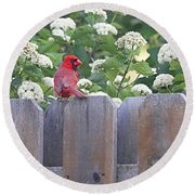 Round Beach Towel featuring the photograph Fence Top by Elizabeth Winter