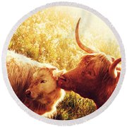 Fenella With Her Daughter. Highland Cows. Scotland Round Beach Towel