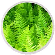 Ferns Galore Filtered Round Beach Towel