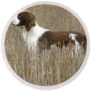 Field Bred Springer Spaniel Round Beach Towel
