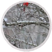 Round Beach Towel featuring the photograph First Snow Fall by Kume Bryant