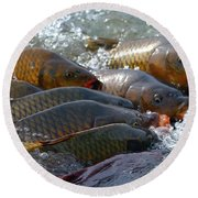 Round Beach Towel featuring the photograph Fishing And Hunting by Elizabeth Winter