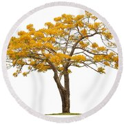 Round Beach Towel featuring the photograph Flam Of The Forest by Atiketta Sangasaeng