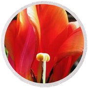 Round Beach Towel featuring the photograph Flame by Rory Sagner