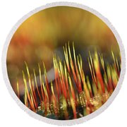 Flaming Moss Round Beach Towel