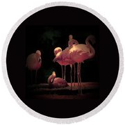 Flamingo 3 Round Beach Towel