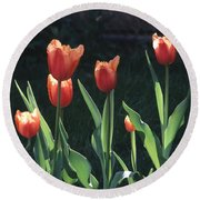 Flared Red Yellow Tulips Round Beach Towel