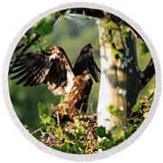Round Beach Towel featuring the photograph Fledgling Testing The Wind by Randall Branham