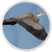 Round Beach Towel featuring the photograph Flight Of The Great Blue Heron by Myrna Bradshaw