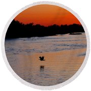 Round Beach Towel featuring the photograph Flight Of The Turkey by Elizabeth Winter
