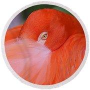 Flirty Flamingo Round Beach Towel by Myrna Bradshaw